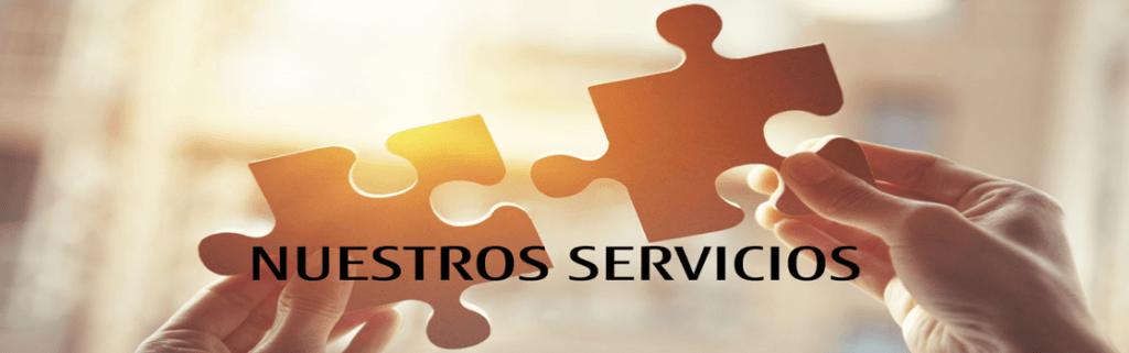 Servicios y Soporte