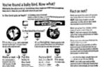 Fujitsu blanco y negro